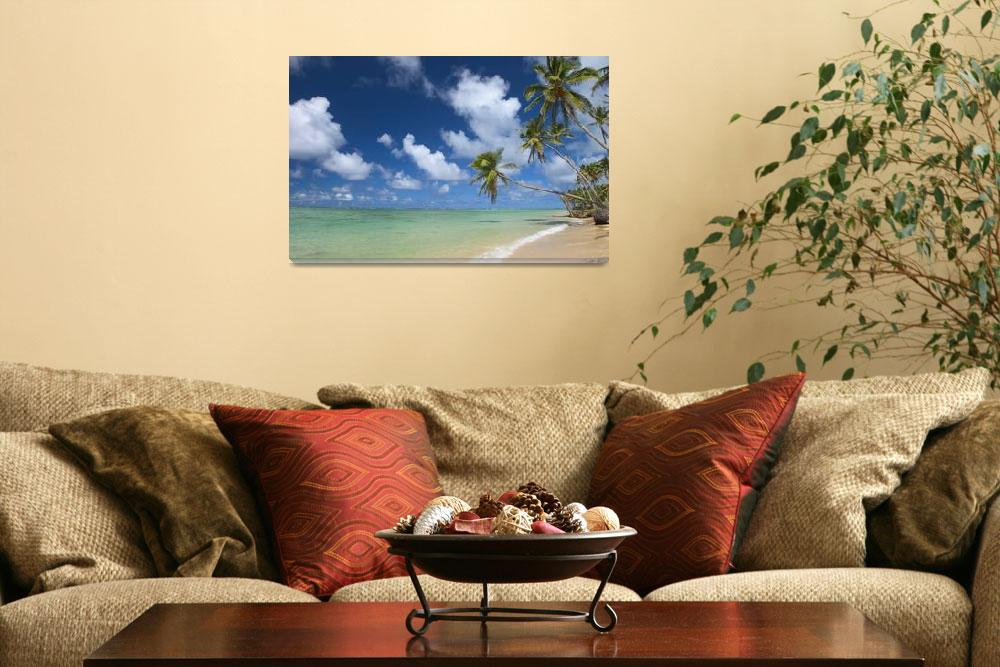 """""""Hawaii, Palm Tree Leaning Over Beach&quot  by DesignPics"""