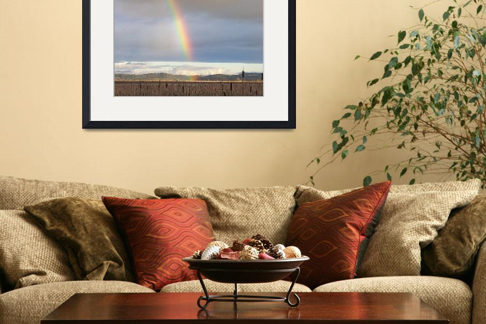 """Winter Rainbow""  (2013) by netbrands"