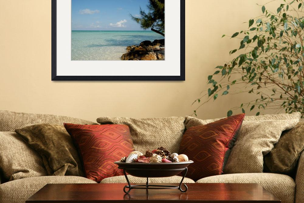 """""""Cayman Islands : Rum Point Mornings (2 of 4)&quot  by RonScott"""