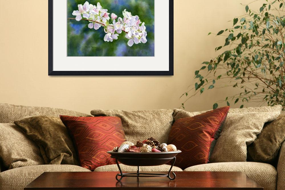 """""""Apple Blossoms with Dark Background&quot  (2014) by Pacific-NW-Watercolors"""
