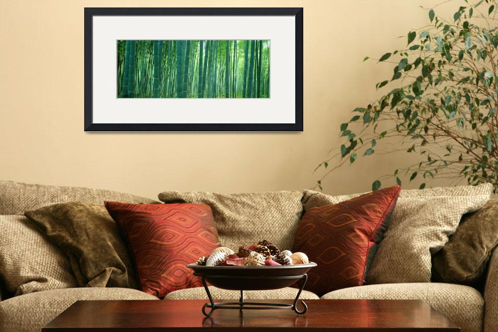 """""""Japan, Bamboo Forest&quot  by IK_Stores"""