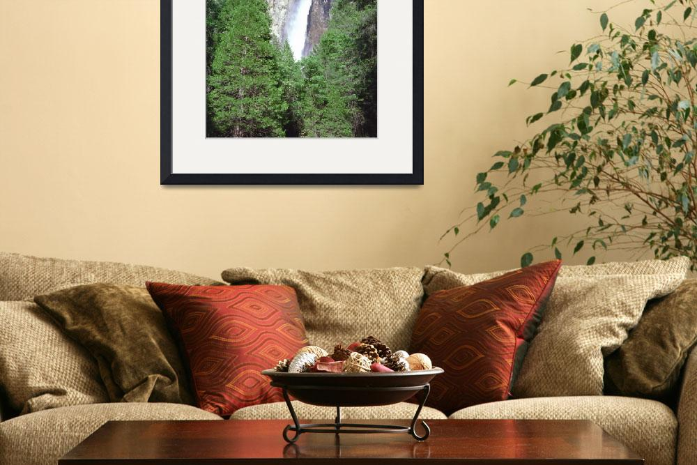 """""""Bridal Veil Falls with Trees&quot  by buffaloworks"""
