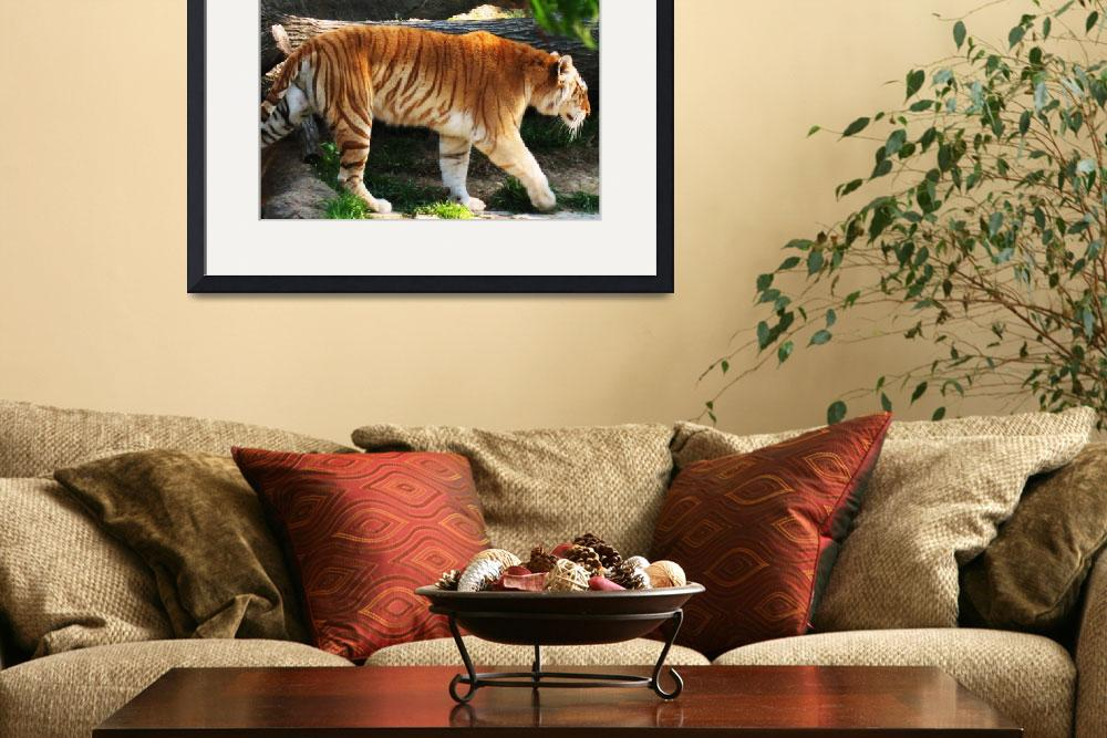 """""""Bengal Tiger&quot  (2009) by laceyleigh"""