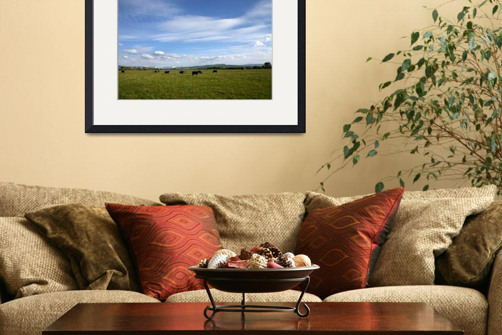 """""""Rocky Mountain Pasture""""  (2006) by Landscapes"""