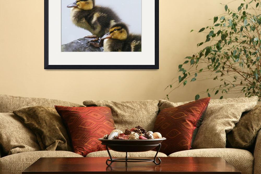 """ducklings&quot  (2008) by bigtrev36"