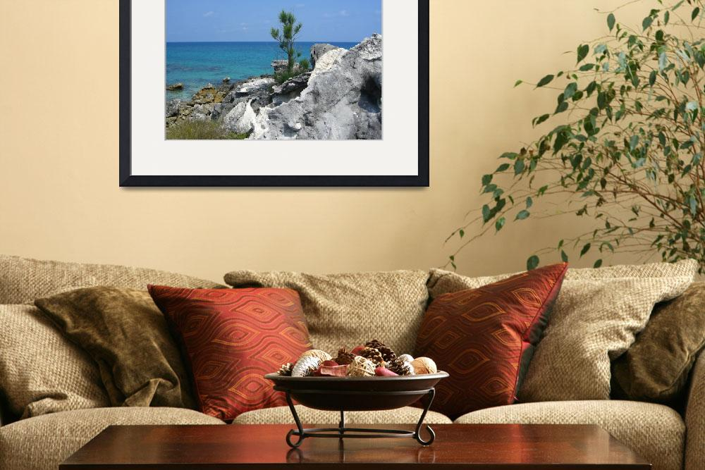 """""""Tobacco Bay, Bermuda&quot  by eyedocal"""