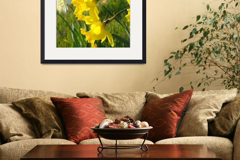 """""""Spring Daffodils Meadow Spring Fields Green&quot  (2014) by BasleeTroutman"""
