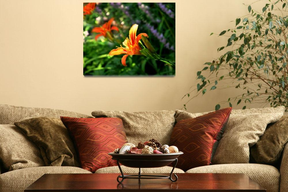 """""""Lily""""  (2011) by PerryWebster"""