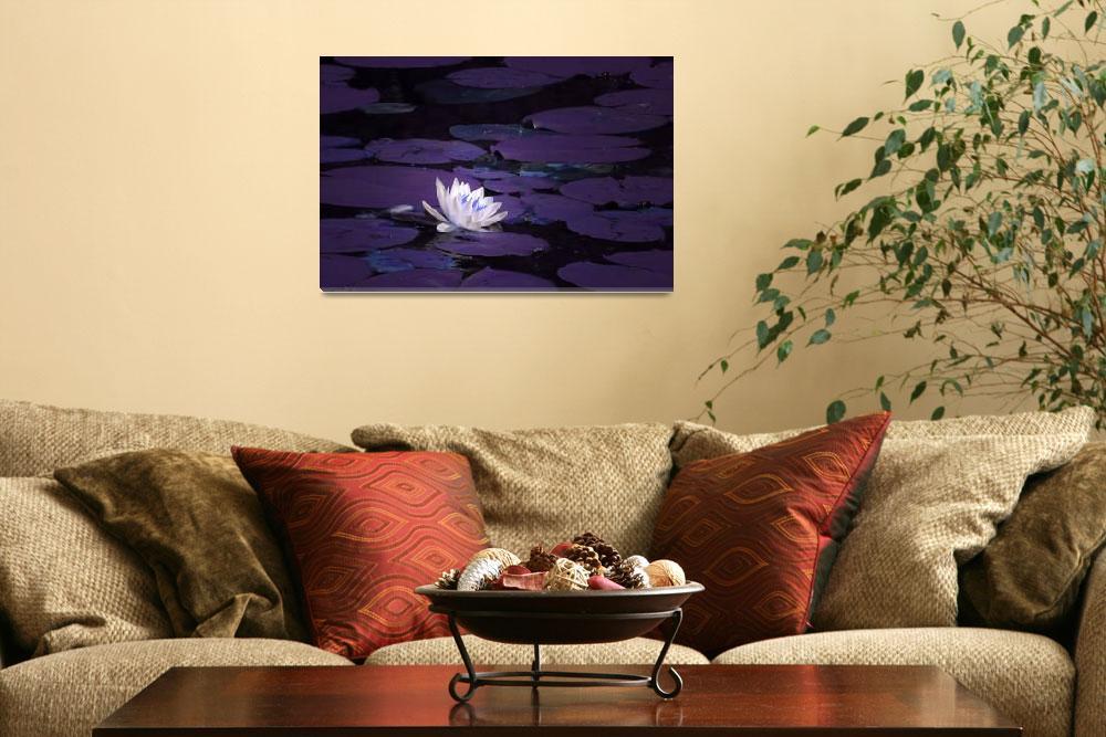 """Purple Pad Pond""  (2011) by karolsstuff"