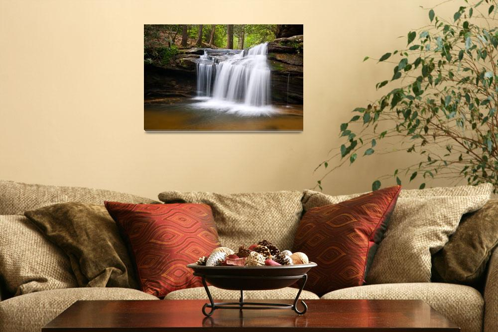 """""""Waterfall on Carrick Creek - Table Rock State Park&quot  (2011) by DAPhoto"""