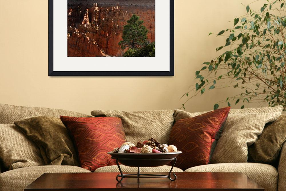 """""""Morning at Bryce National Park&quot  (2007) by jmjm"""