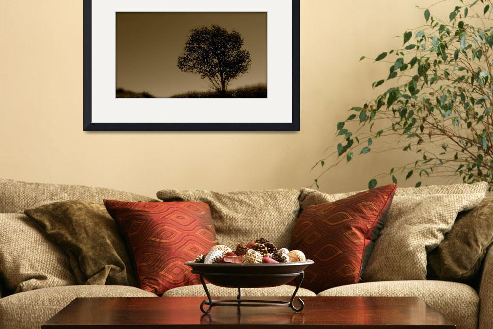 """""""Sepia Tree&quot  (2009) by ChuckDilmore"""