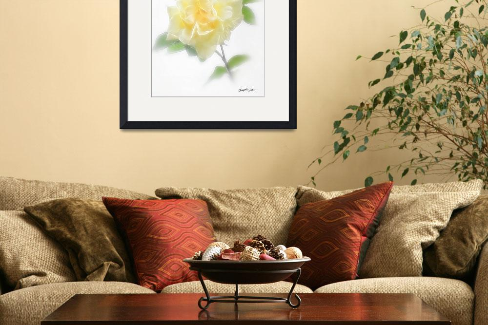 """""""Creamy Yellow Rose - Divinity&quot  (2009) by ChristopherInMexico"""