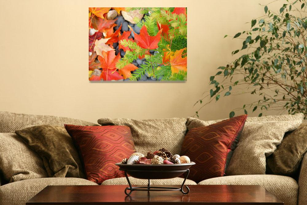 """""""Fall Leaves Red Orange Autumn Tree leaves prints&quot  (2010) by BasleeTroutman"""