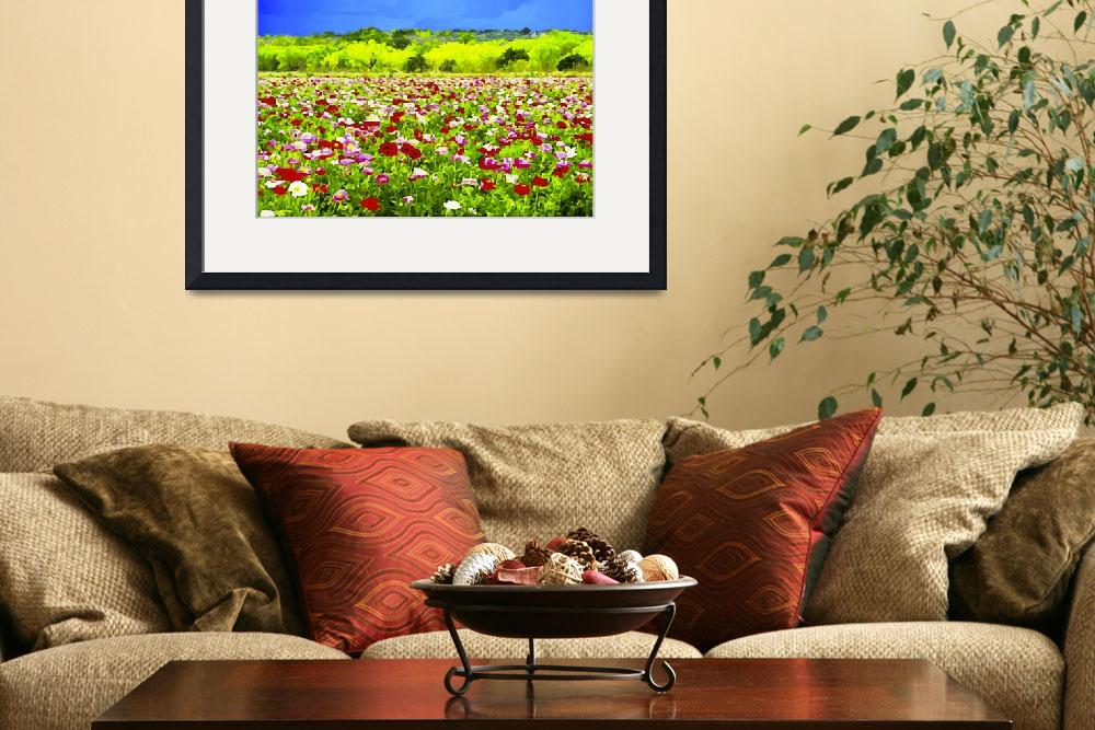 """""""Poppies Under The Texas Sky&quot  by BonnieFeasterChapa"""