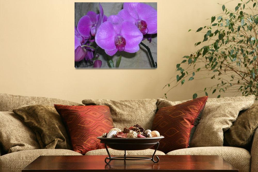 """Purple Flowers&quot  by memoriesoflove"