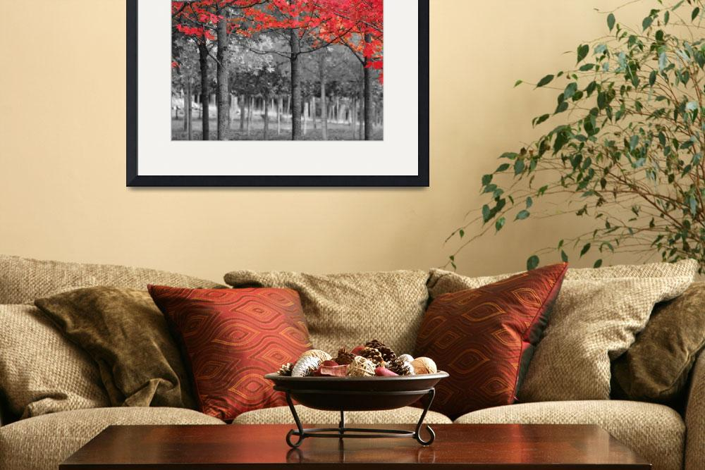 """Eola Hills 19482 Full Color_RedLeaves&quot  (2013) by jerrysodorffphotography"