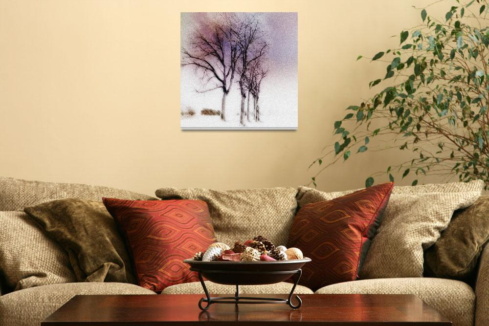 """winter trees&quot  (2007) by studiobrian"