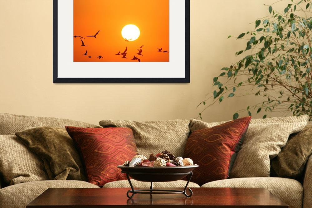 """""""Seagulls Flying Infront of the Sun&quot  (2011) by DonnaCorless"""