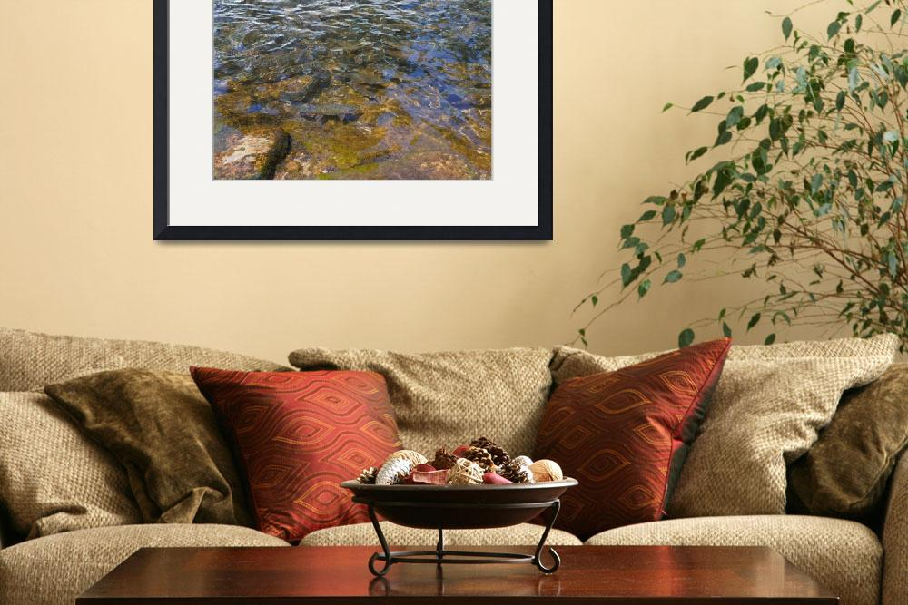 """""""Fish Rainbow Trout Art Prints Dads gifts&quot  (2014) by BasleeTroutman"""