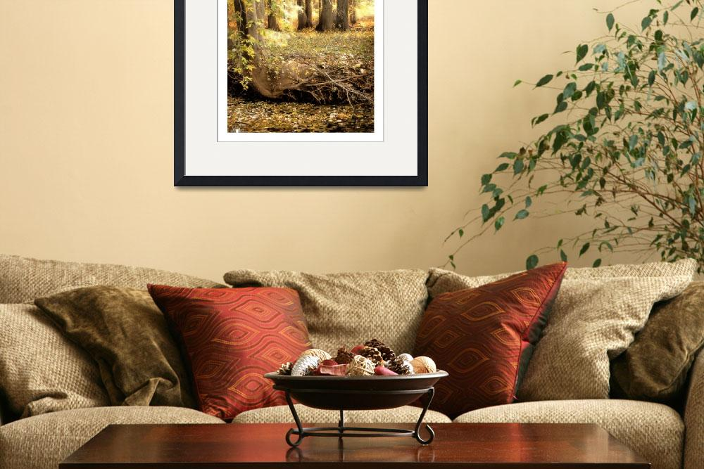 """""""Autumn Gold&quot  by CCordelia"""