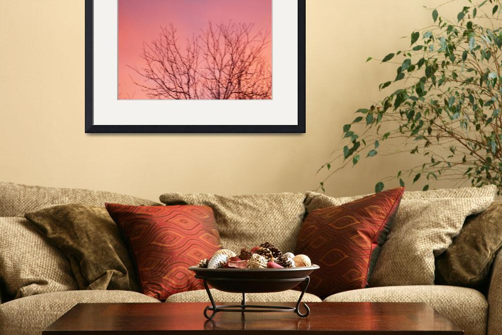 """""""Pink Sky & Tree&quot  (2009) by MichaelClydeEllis"""
