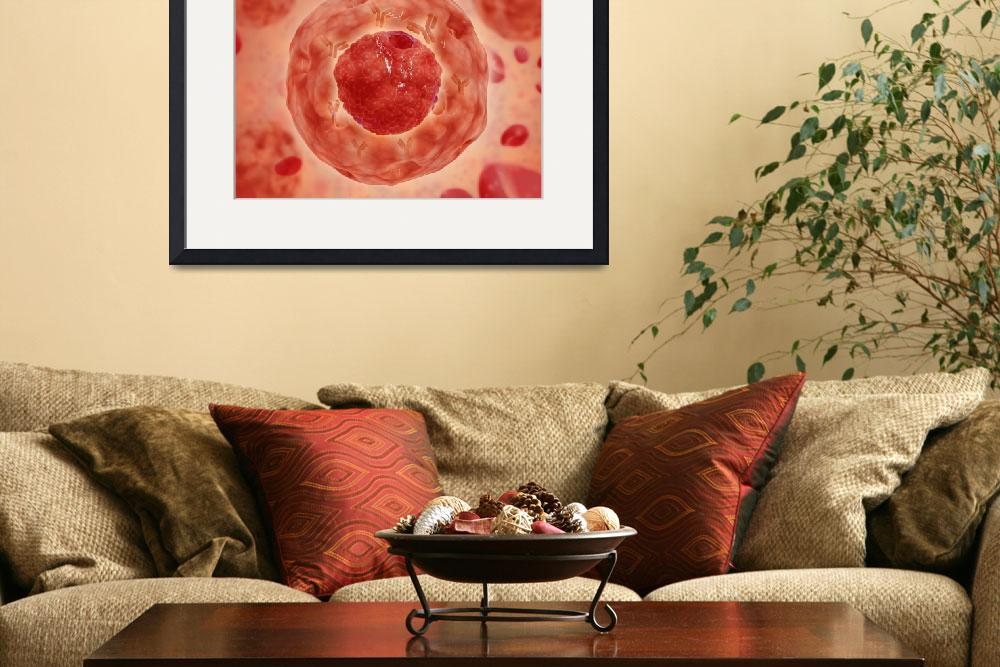 """""""Cell nucleus with chromosome&quot  by stocktrekimages"""