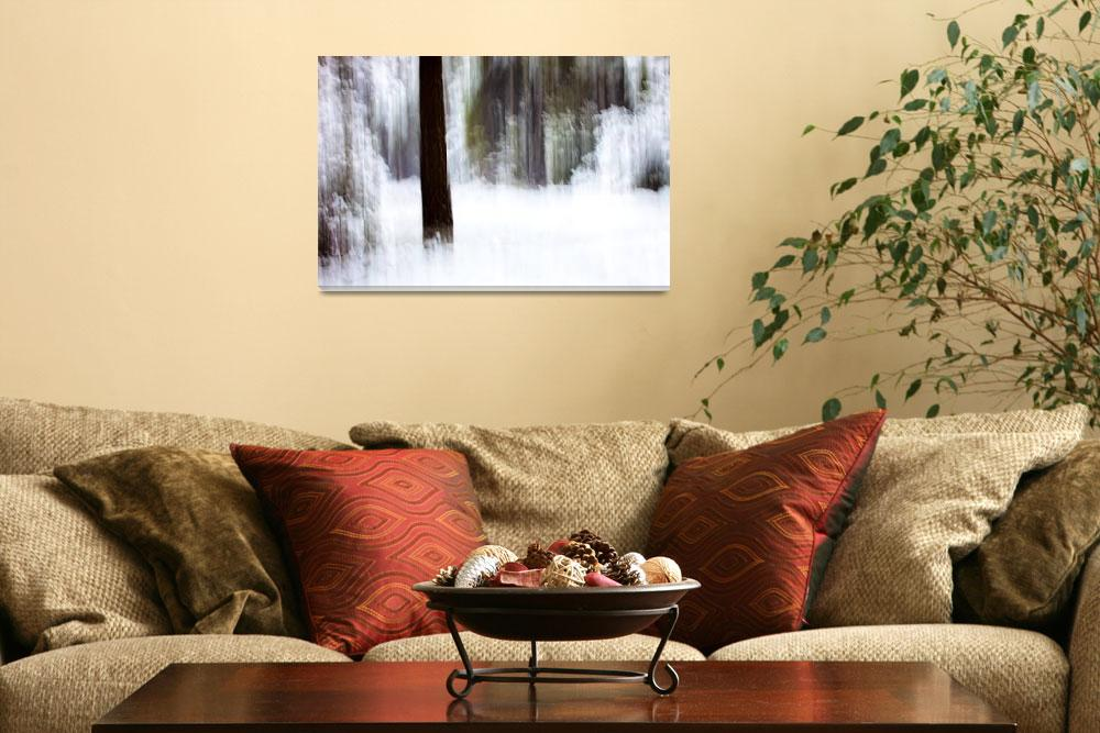 """""""Snow In The Forest""""  (2012) by mgarrido"""