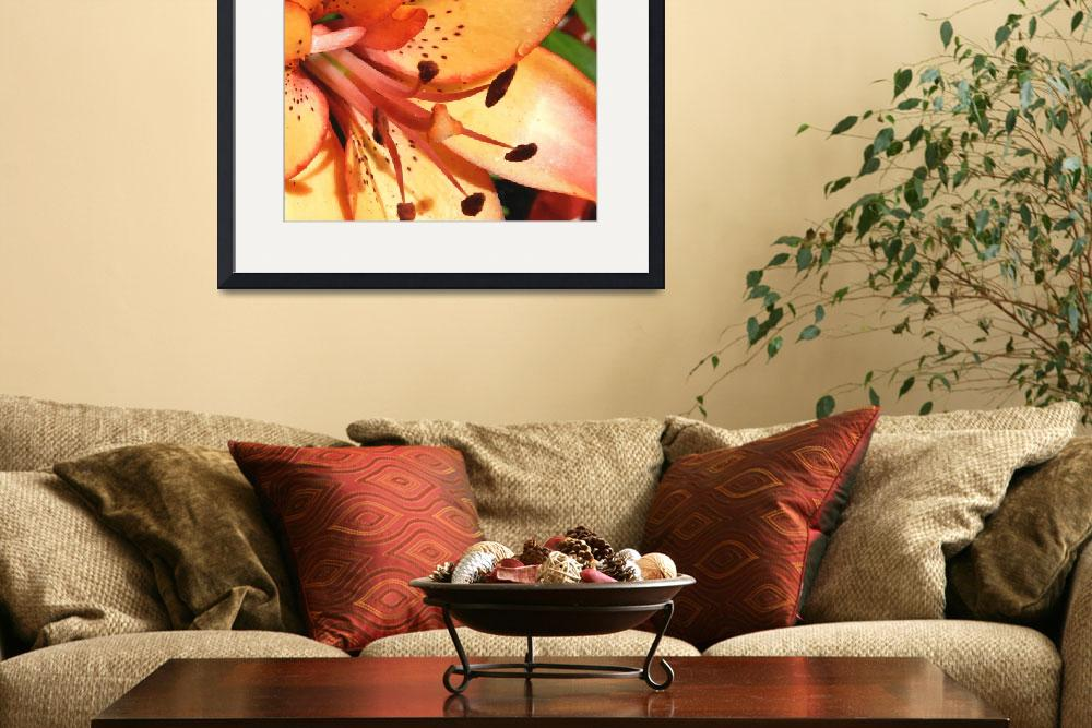 """""""orange lily watercolor""""  by lizmix"""