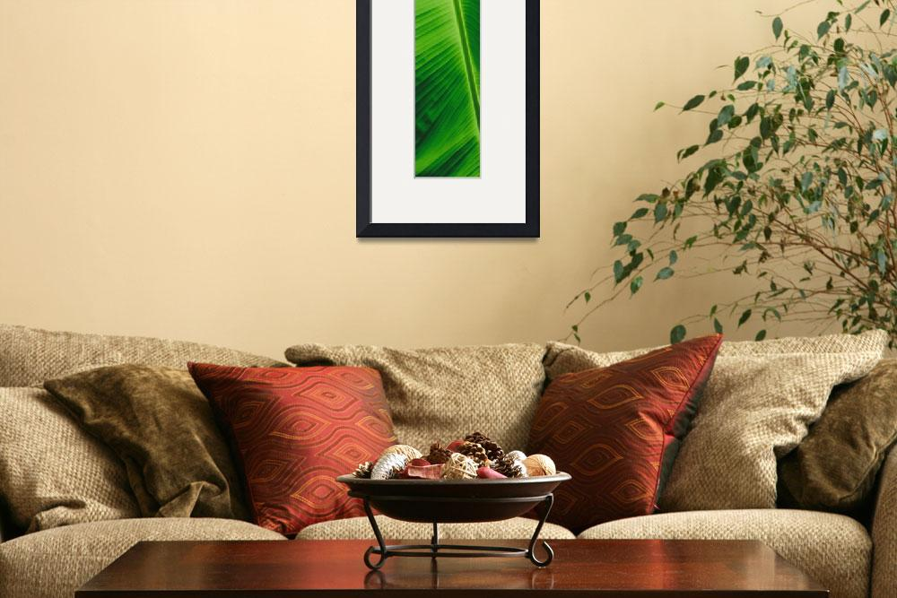 """""""Green Leaf&quot  (1999) by LurenaHuffman"""