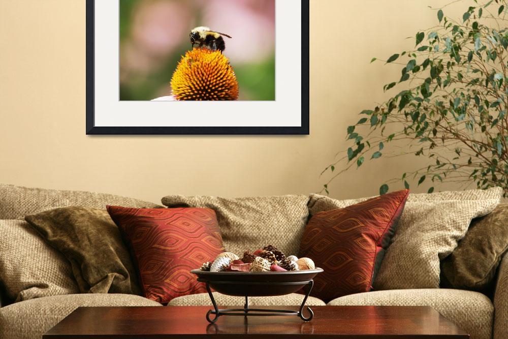 """""""Bee & Flower 2&quot  by Vincent-tang"""