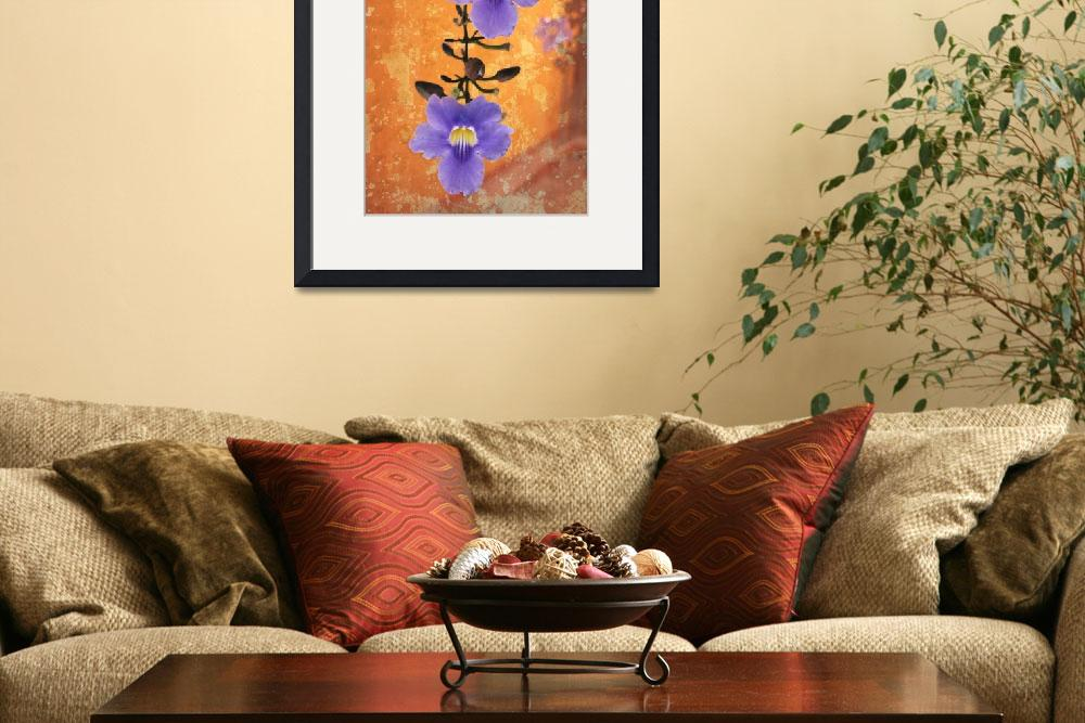 """""""Flowering vine in Antigua, Guatemala&quot  (2012) by charker"""