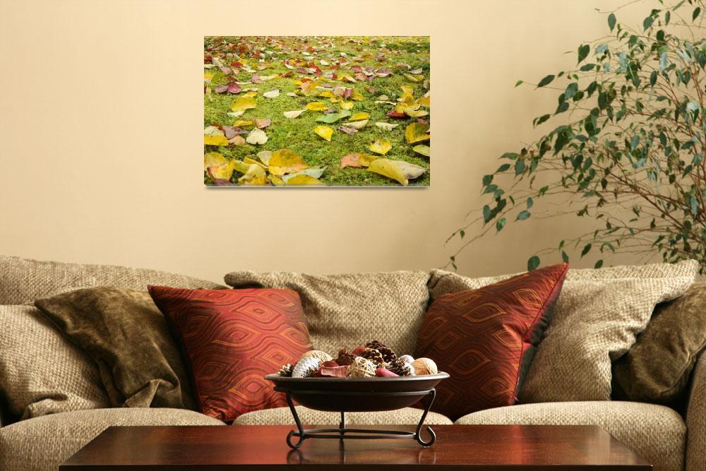 """""""Japanese Garden""""  (2010) by baechlergallery"""