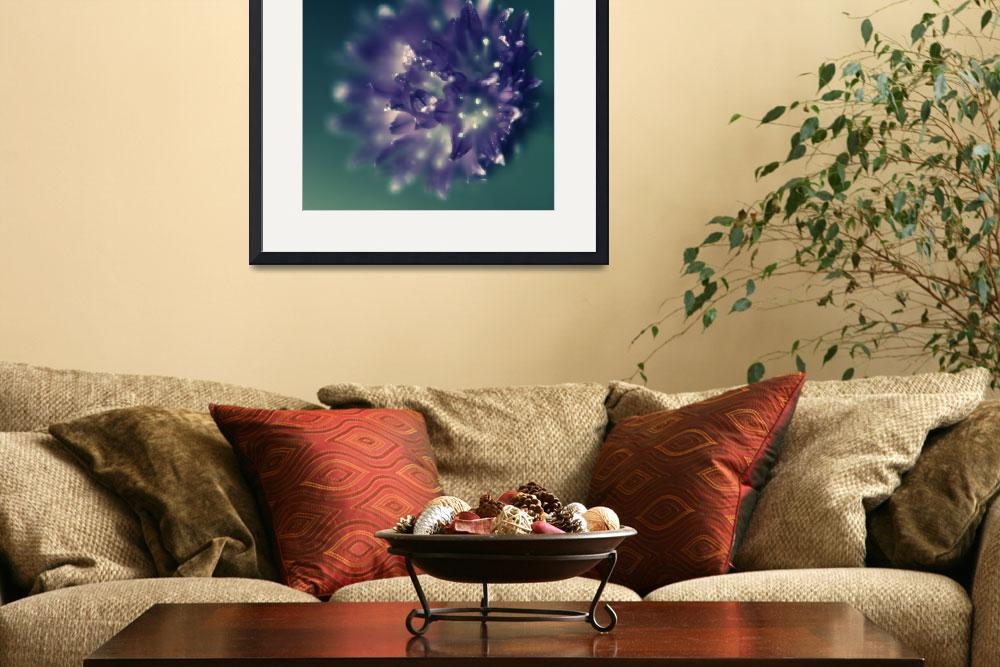 """""""Chive flower&quot  by Mike_Bartley"""