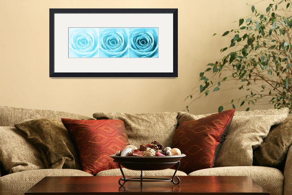"""""""Turquoise Rose with Water Droplets Triptych""""  (2012) by NatalieKinnear"""