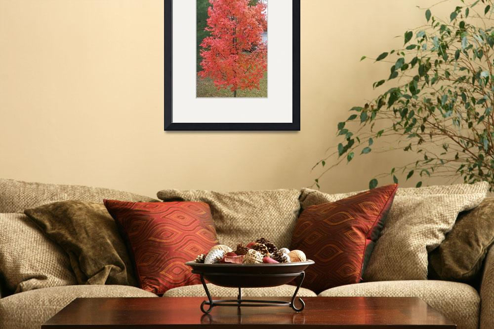 """""""Fall Orange&quot  (2013) by CSpin"""