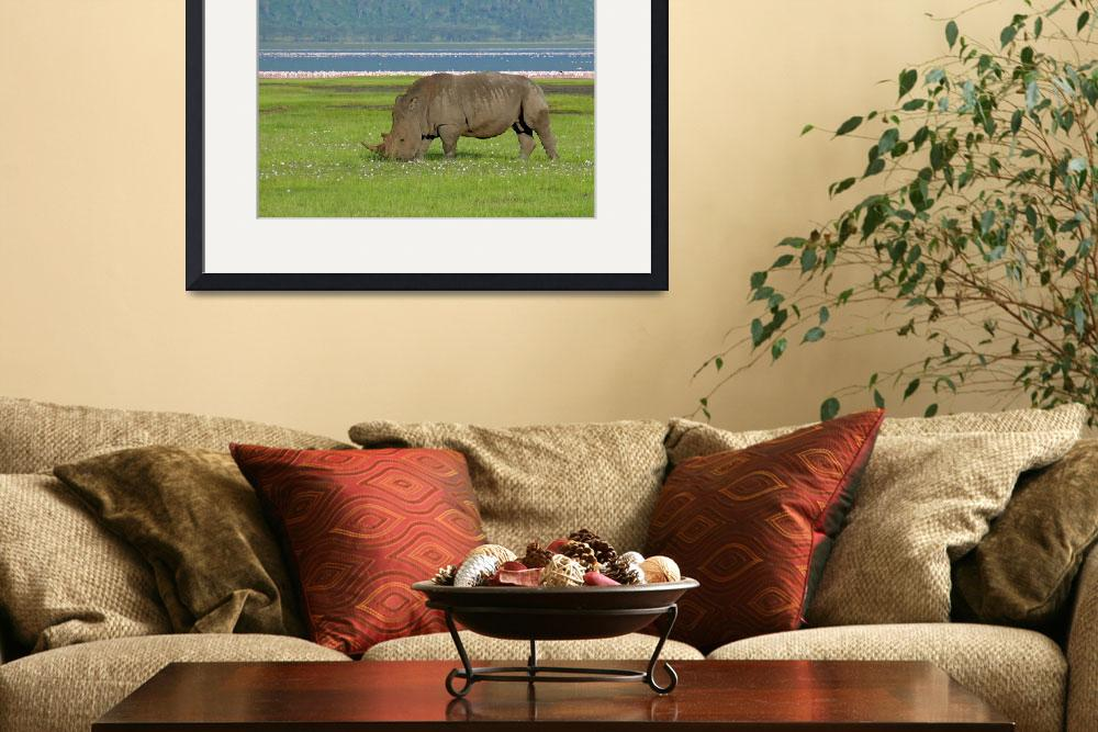 """""""White Rhino with Flamingos&quot  (2007) by stockphotos"""