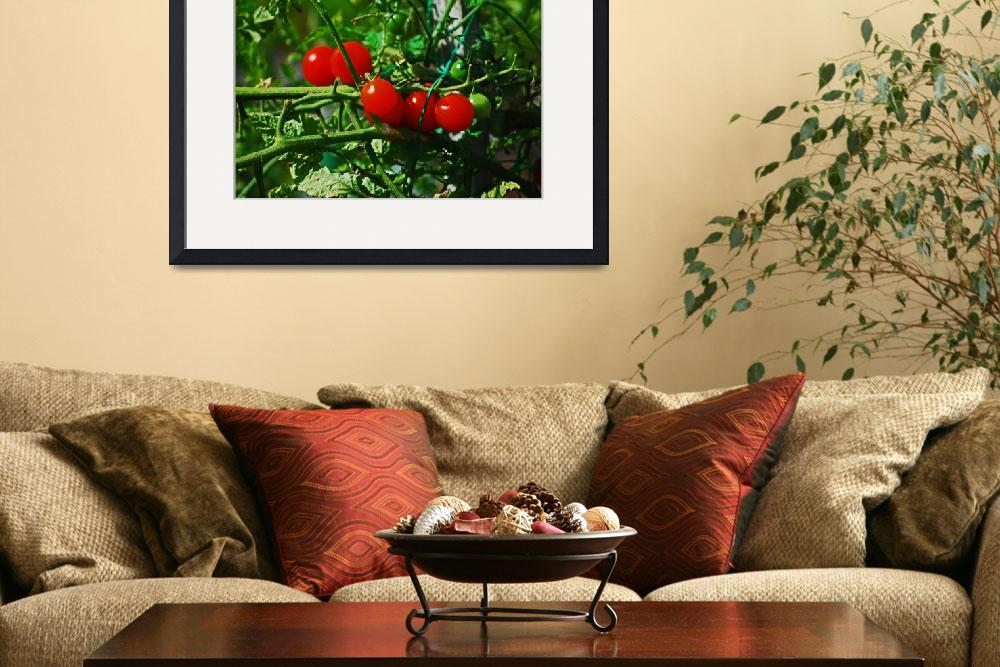 """""""088 HOME GARDEN&quot  by KEITHMOUL"""