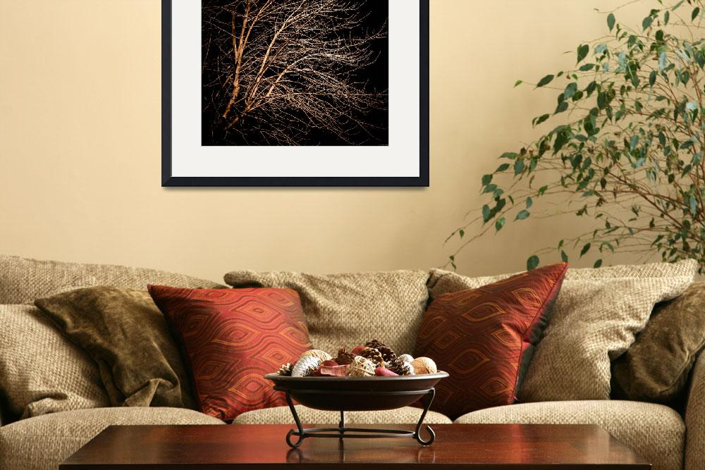 """""""Square Branches at Night&quot  (2012) by DroptheHAT"""