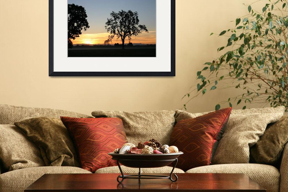 """""""sunset tree&quot  by wisrone"""