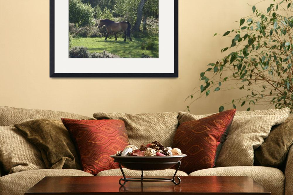 """""""""""Galloping Exmoor Pony """" by Sharon Shirley&quot  by Sharona5"""