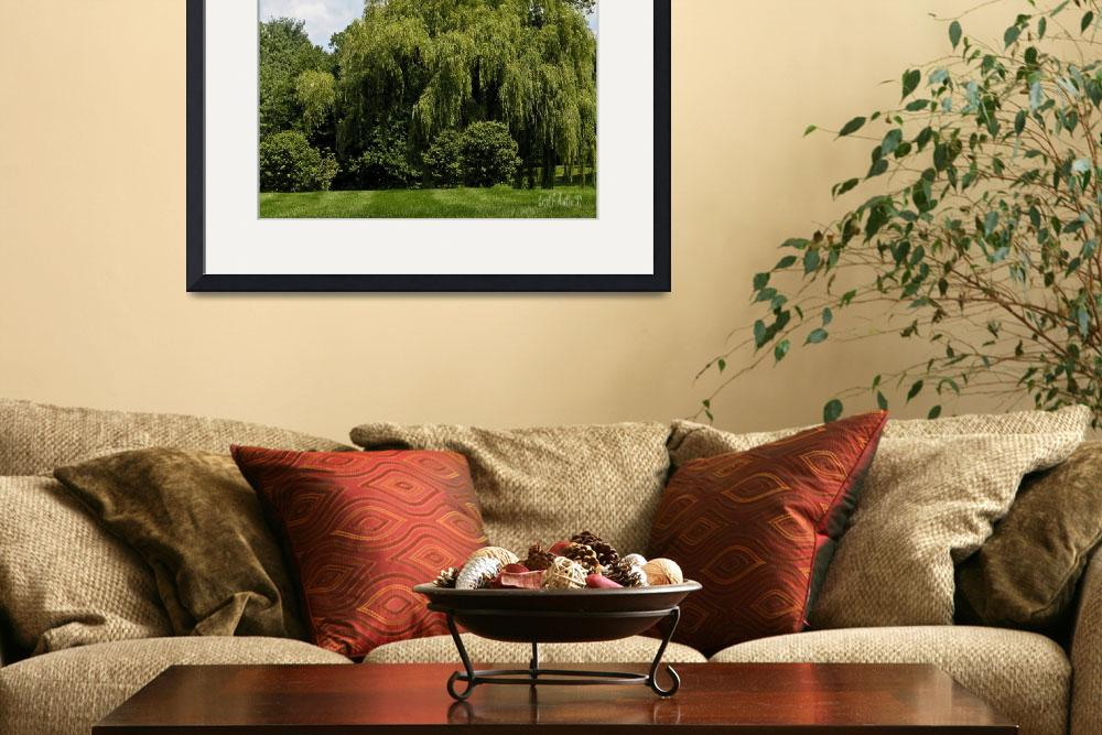 """""""Weeping Willow Tree Landscape Wall Art""""  (2017) by PhotographsByCarolFAustin"""