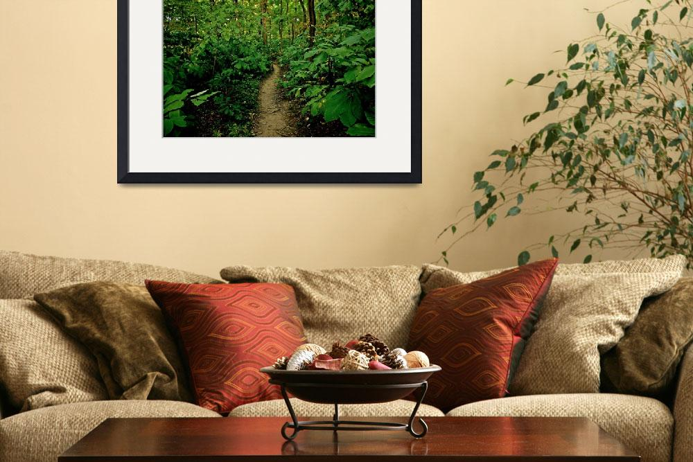 """""""Enchanted Path&quot  (2011) by ideaproductions"""