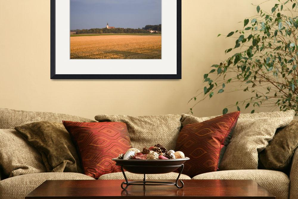 """""""Evening light over golden field""""  by IanMiddletonphotography"""