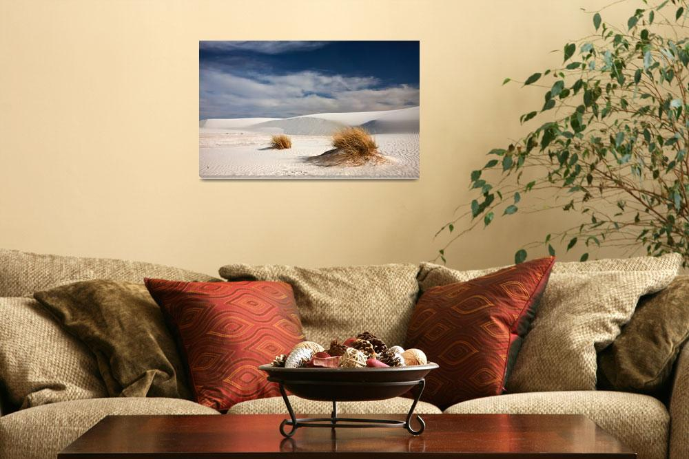 """The Dunes of White Sands""  by pbk"