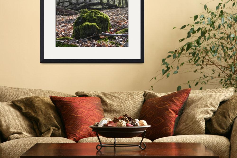 """""""mossy rock&quot  (2014) by NaturallyMoore"""