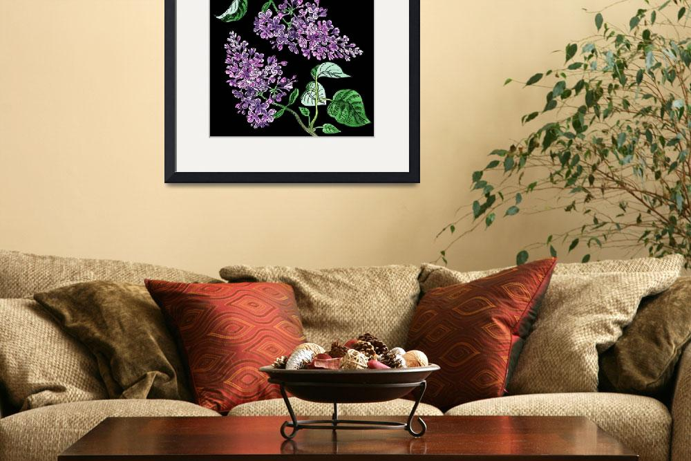 """Lilac Flower Watercolor With Black Background""  (2018) by IrinaSztukowski"