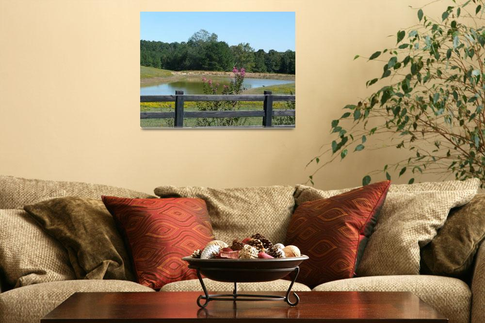 """""""Peaceful Country Living 1258""""  (2011) by photographybydonna"""