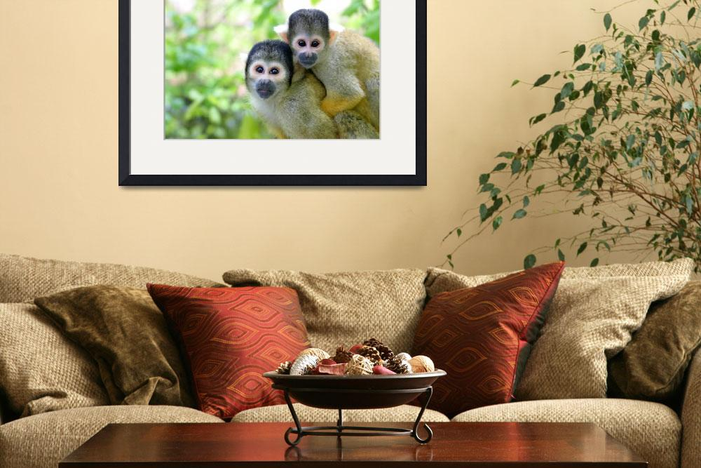 """Squirrel monkey family&quot  (2005) by Junglefrog"