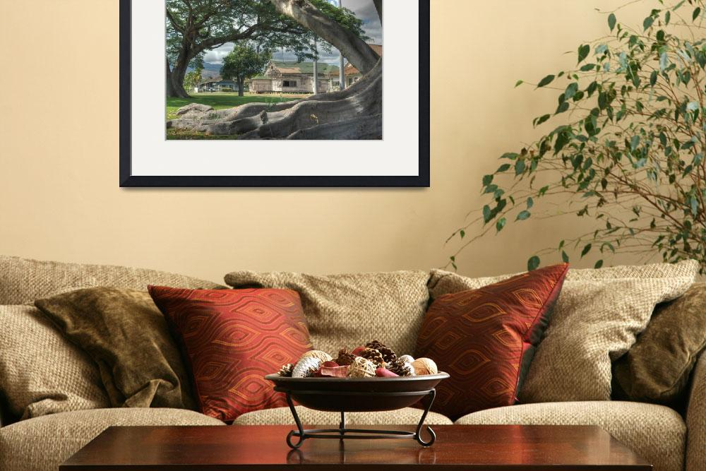 """""""Framing by the Tree&quot  by JPhilipson"""